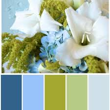 blue green white color palette for the study i think this