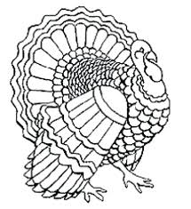 printable turkey feather outline targets coloring pages