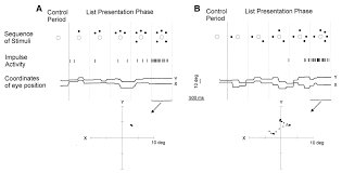 motor cortical encoding of serial order in a context recall task