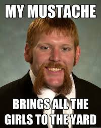 Guy With Mustache Meme - trending annual moustache warning movember is coming