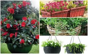 best planters best outdoor planters for 2018 garden lovers club