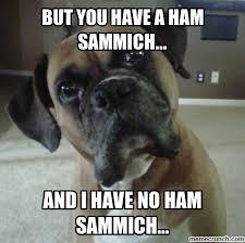 Sammich Meme - sammich