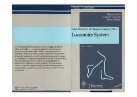 Colour Atlas Of Human Anatomy Color Atlas And Textbook Of Human Anatomy Locomotor System
