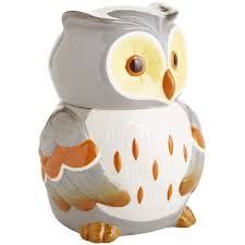 Owl Canisters For The Kitchen Hand Painted Marvin The Owl Cookie Jar Pier 1 Imports