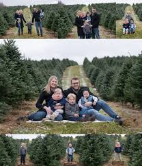 columbus oh family photography christmas sessions at tree farm
