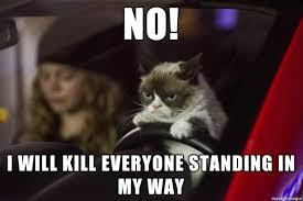Grumpy Cat Meme - grumpy cat driving meme on imgur
