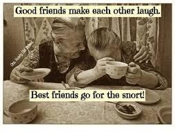 Best Friends Meme - good friends make each other laugh best friends go for the snort
