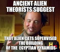 Cat Alien Meme - cat i m not quirky i m crazy