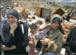 political organizing home demolitions forced displacement palestine portal