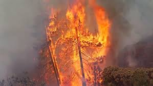 Wildfire Social Media App by Sdg U0026e Pushing For Customers To Pay For 2007 Wildfires Nbc 7 San
