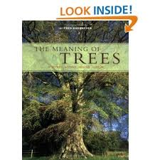 ttees meaning the meaning of trees botany history healing love fred