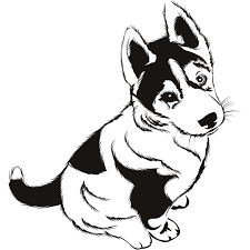 husky coloring pages coloringsuite com