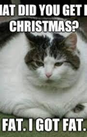 Soft Kitty Meme - soft kitty because i can buglet804 wattpad