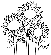 sunflower clipart coloring pencil and in color sunflower clipart