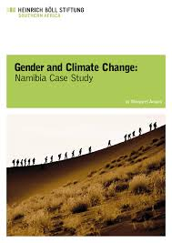 gender and climate change namibia case study pdf download available