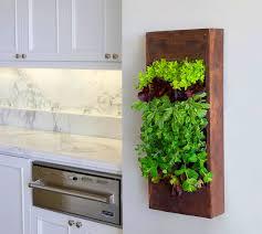 fabulous kitchen vertical garden edible walls gardensdecor com