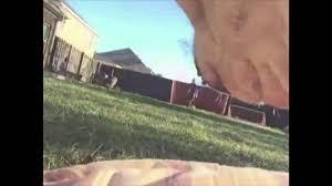 Dog Peed On Bed Dog Pees On Gopro Youtube