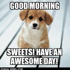 Memes Good Morning - good morning memes 1400671129860 hello s good mornings and