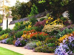 home design for beginners perennial garden layout home design ideas and pictures flower plans