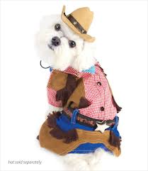 dog clothes for halloween dog costumes for halloween and special events u2013 g w little