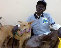 Comfort Pet Certification How To Help Donate The Big Fix Uganda