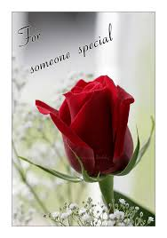 for someone special desicomments
