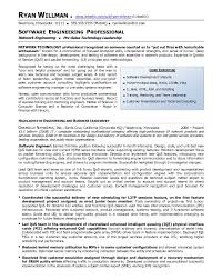 resume examples for professionals resume format for it