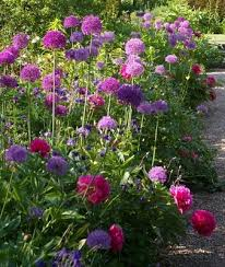 75 best flower bed ideas images on pinterest flower gardening