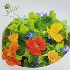 les fleurs comestibles en cuisine fleurs comestibles kit complet avec graines terreau et mini serre