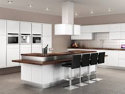 Modernizing Oak Kitchen Cabinets by Kitchen Modern Kitchen Cabinets And 16 Modern Kitchen Cabinets