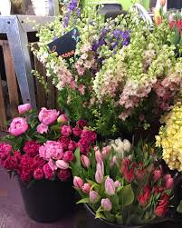cut flowers rubia flower market florist west lafayette indiana fresh