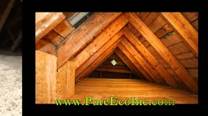 House Needs by Pure Eco Inc Provides The Insulation Every House Needs Pure