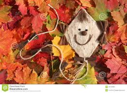 funny kite and autumn leaves royalty free stock image image