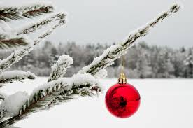 single ornament on a snow tree pictures photos and images