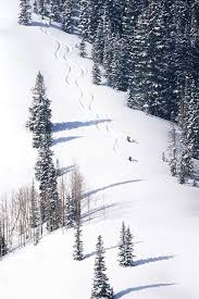 77 best winter in utah images on ski trips powder and