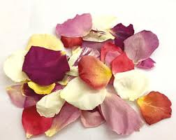 real petals freeze dried petals for weddings by farmgirlrosepetals