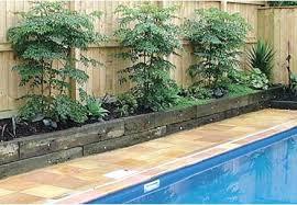 Fragrant Climbing Plant - landscape pool idea u2013 bullyfreeworld com