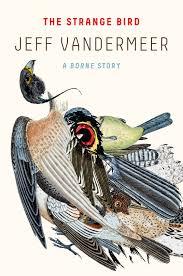 the strange bird jeff vandermeer macmillan