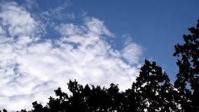 imagenes hermosas que se mueben las nubes de cúmulo blancas hermosas se mueven en fondo del cielo