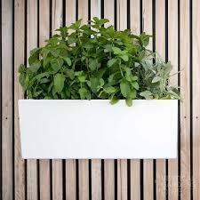 Watering Vertical Gardens - glowpear mini wall self watering wall mounted planter box