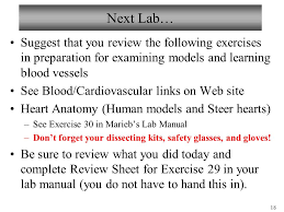 Pearson Anatomy And Physiology Lab Manual Biology 102 Laboratory 1 Blood And Blood Typing Ppt Video Online