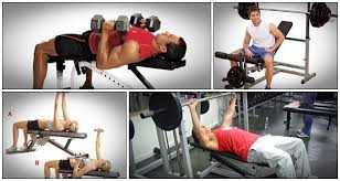 Squat Deadlift Bench Press Workout Andy Bolton Strength Pdf Program Does This Course Work