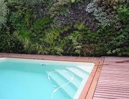 vertical garden poolside vertical garden pinterest garden