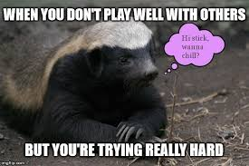 Honey Badger Meme - socially awkward honey badger imgflip