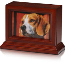 dog urns 65 lbs dog urns product categories paw prints pet crematory