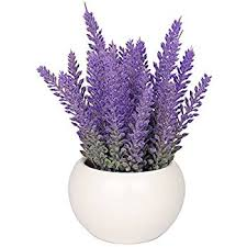 lavender flowers vgia white ceramic artificial potted plant with home