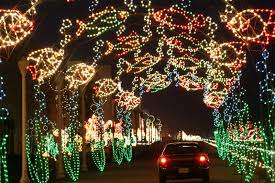 best christmas light displays in the south