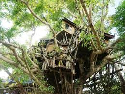 best price on pai treehouse resort in pai reviews