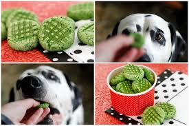 dalmatian diy recipe green vegetable st patrick u0027s day treats