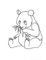 the awesome baby panda coloring pages intended to really encourage